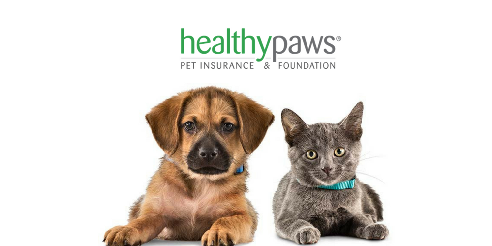 SEATTLE, Feb. 1, /PRNewswire/ -- Healthy Paws Pet Insurance—the #1 customer-rated provider of health insurance for dogs and cats— is proud to announce that they are joining forces with.