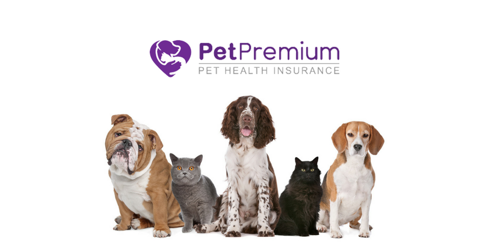 PetPremium Pet Insurance Review