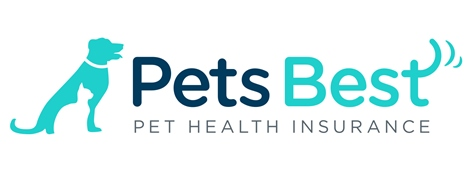 Pet Insurance Companies >> Affordable Pet Insurance For Cats Dogs 365 Pet Insurance