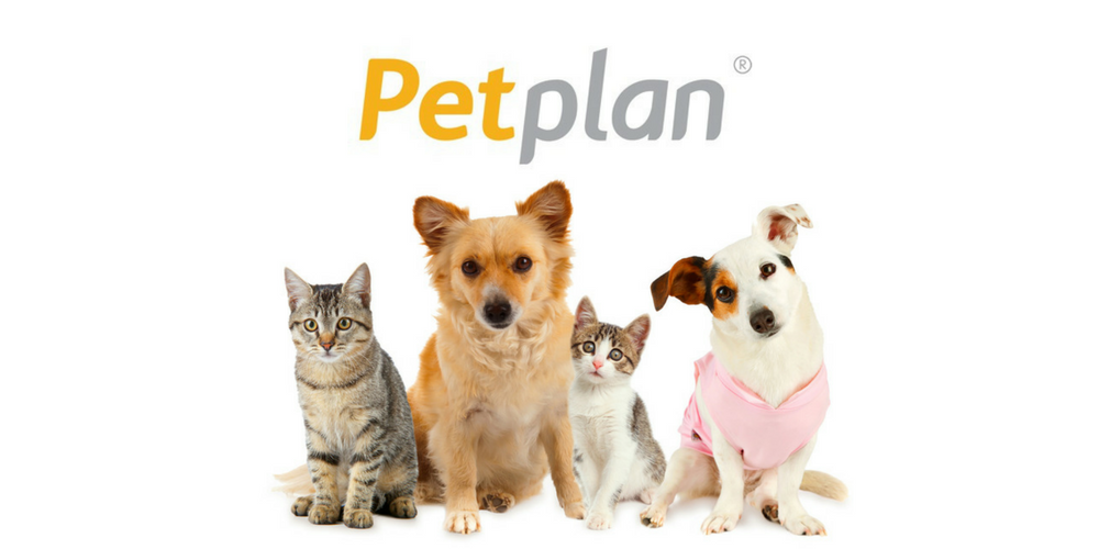 Image result for pet plan
