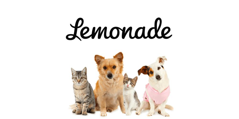 Lemonade Pet Insurance Review