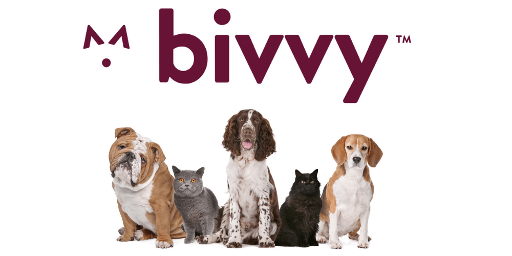 Bivvy Review