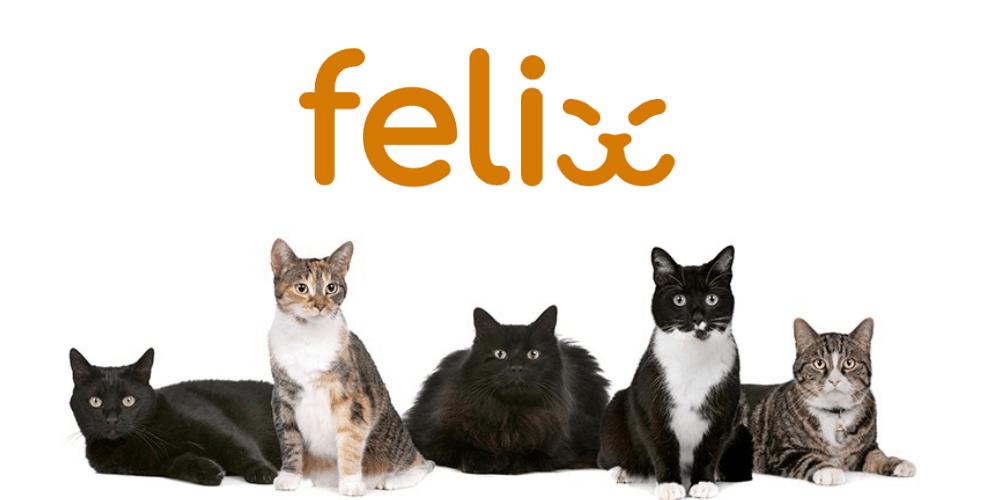 Felix Cat Insurance
