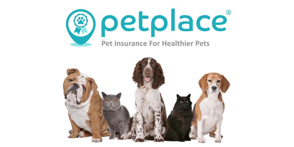 PetPlace Pet Insurance Review