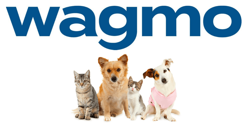 Wagmo Pet Insurance Review